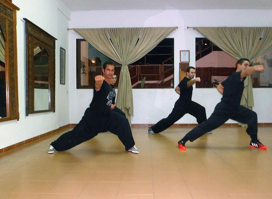 kung fu classes in tenerife