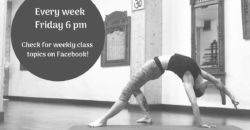 Hatha yoga mini workshops